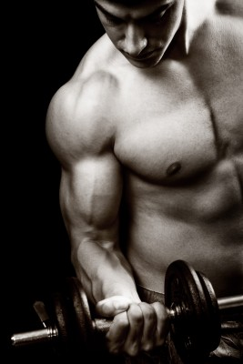 Body Builder Weight Lifting